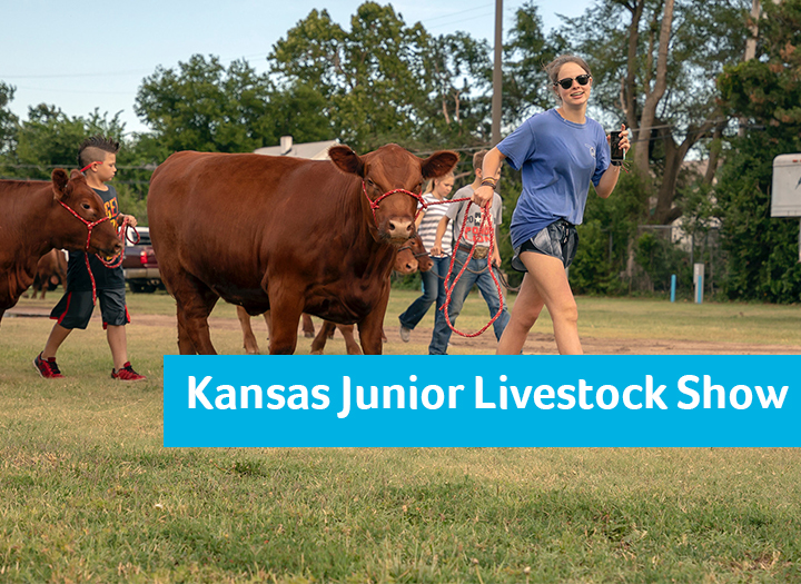Kansas Jr. Livestock Show Photo - Click Here to See