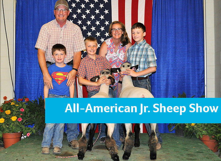 All-American Junior Sheep Show Photo - Click Here to See